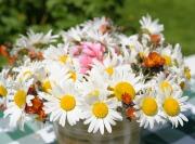 Selbstgepflückter Blumenstrauss