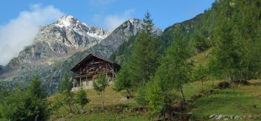 3. Tag - Vorbei an alten Gehöften steigen wir weiter hinauf zum Colle Valdobbia (2.480 m)