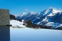 Außenpool mit Bergsicht