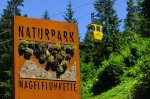 Naturpark Nagelfluhkette am Hochgrat