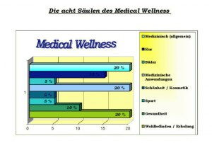 Säulen des Medical Wellness