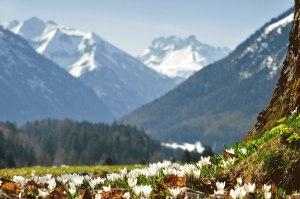 Frühling in Oberstdorf