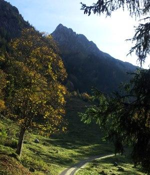 Weg ins Dietersbacher Tal
