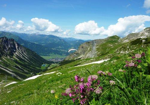 Am Nebelhorn