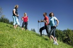 Nordic Walking Touren durch saftige Bergwiesen