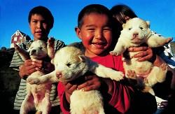 grönländische Kinder