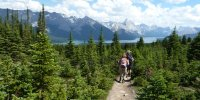 Bald Hills am Maligne Lake