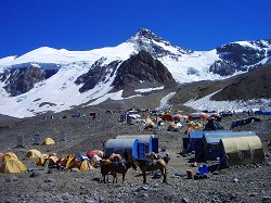 Aconcagua Basecamp