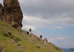 Wie die Bergziegen!