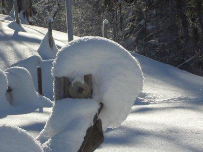 Schneeskulptur am Wanderweg