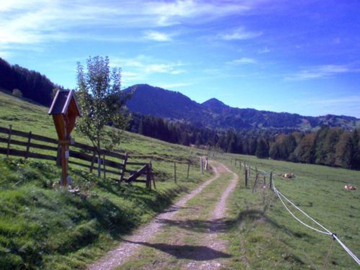 Von der Alpe Sonnhalde Richtung Tarzansteg
