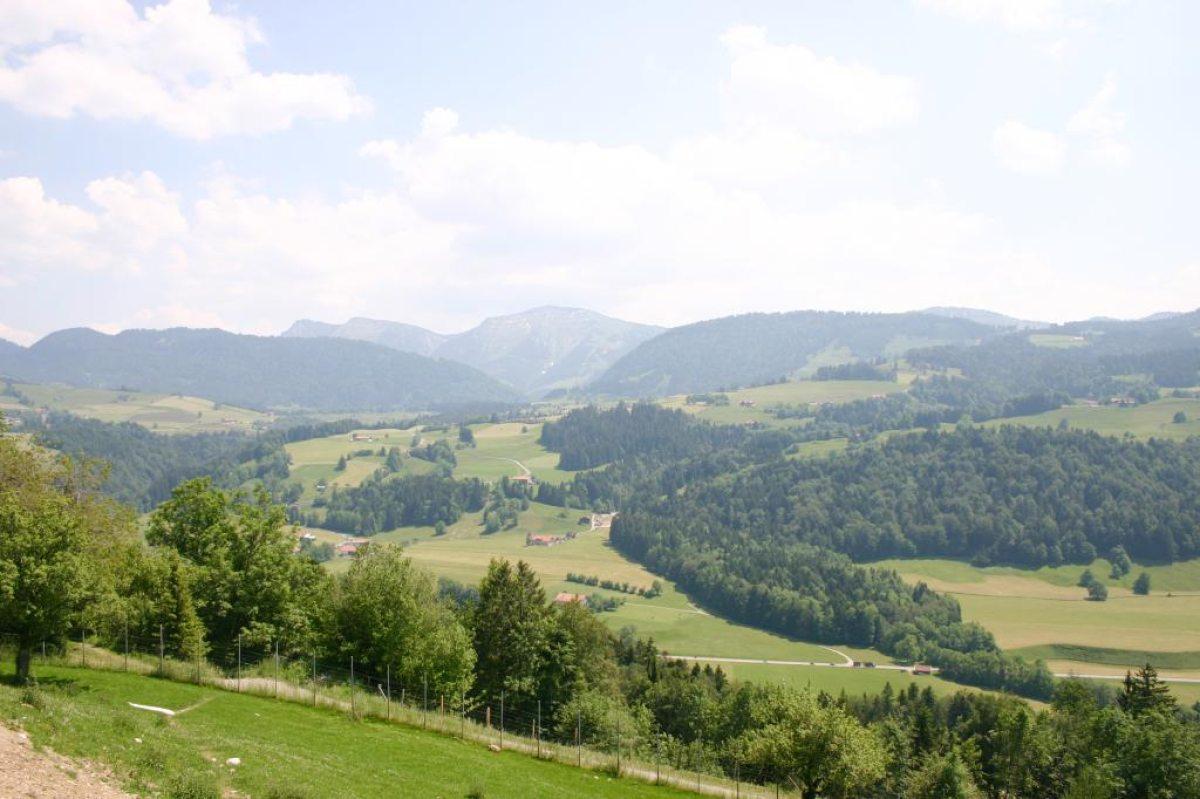 Panoramablick vom Ortsteil Berg Richtung Steibis und Hochgrat