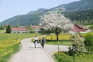 Wanderweg Richtung Thalkirchdorf