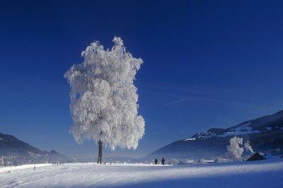 Winterpanorama in Thalkirchdorf