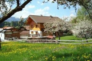 Haus Antonius 2 F✷✷✷ mit Apfelblüte