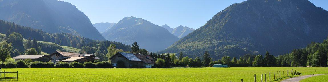 Oberstdorfer Sommerwiesen