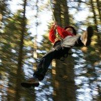 Flying Fox Park