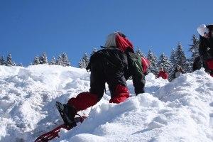 Schneeschuhaufstieg