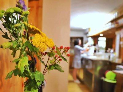Gastronomie Innenaufnahmen