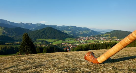 Panorama in Oberstaufen