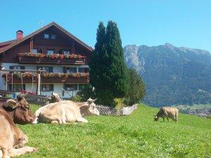 Sonnetanken am Alp-Hof