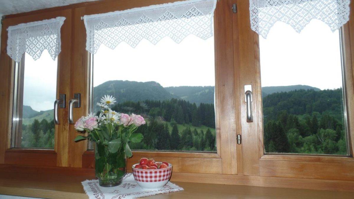 Fewo Gaisberg Panorama
