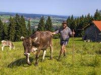 Alpe Blösse