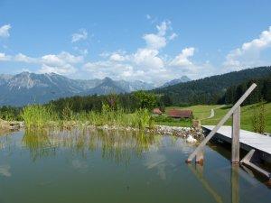 Schwimmteich - Panorama