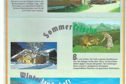 Alpe Dornach Prospekt früher