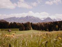 Aussicht aufs Nebelhorn im Frühling