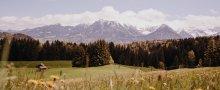 Alpe Dornach Ausblick aufs Nebelhorn