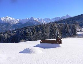 Winterurlaub - Alpe Dornach
