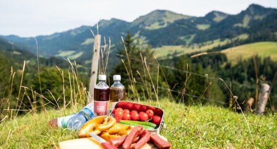 Hütteneinkehr in den Bergen von Oberstaufen