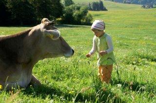 Kuh mit Kind