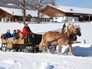 Kutschfahrt im Winter