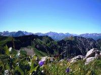 Blick vom Nebelhorn