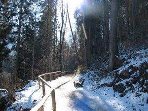 Wanderwege - Oybele- Moorweiher