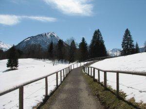 Wanderweg zum Moorweiher