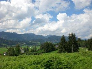 Blick vom Dienersberg
