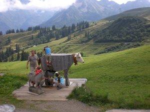 Melken für jedermann auf der Alpe Schlappold