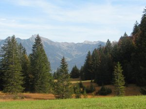 Sesselalpe bei Tiefenbach