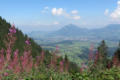 Blick auf Grünten vom Kierwanger Berg