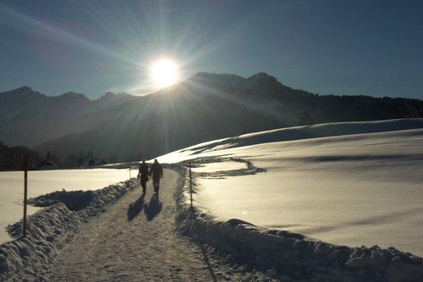 Mitten hinein ins Winterparadies