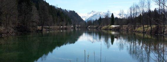 Frühling am Auwaldsee