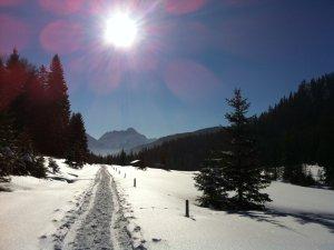 Winterwandern im Rohrmoos