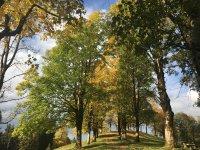 Herbst am Moorweiher in Oberstdorf/Allgäu