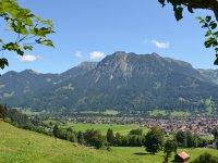 Blick vom Alphof