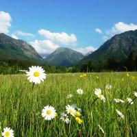Sommer: heiter bis leicht bewölkt
