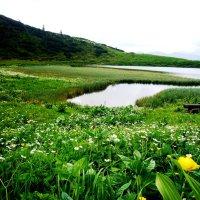 Feuchtwiesen am Schlappoldsee