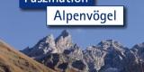 Faszination Alpenvögel